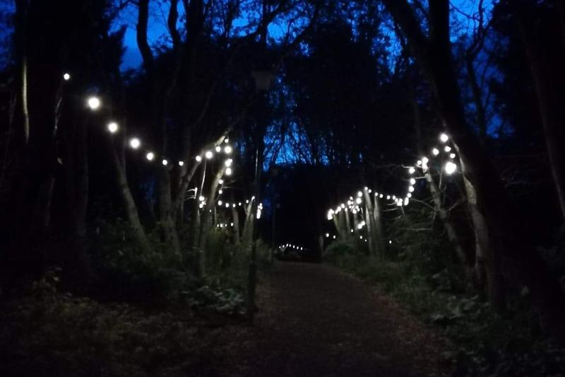 Botanic Garden at night_7