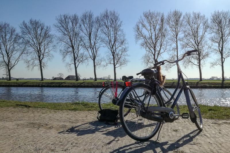 Mein Auslandssemester in den Niederlanden