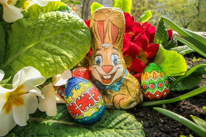 Ostern und seine Bräuche – ein Blick hinter die Kulissen: ein folierter Osterhase sitzt mit bunten Eiern in einem Blumenbeet