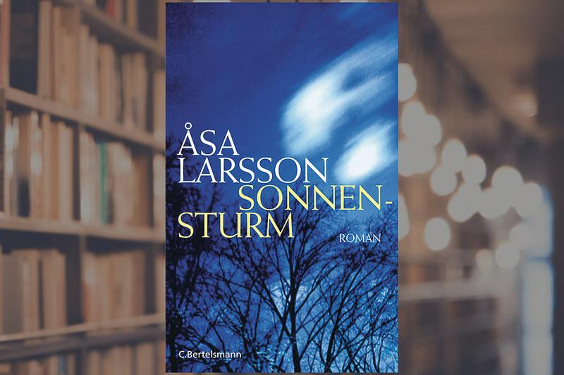 Nordic Noir Buchtipp Larsson