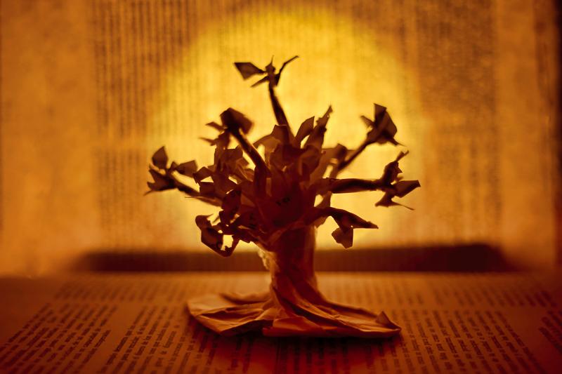 Origami falten: Baum